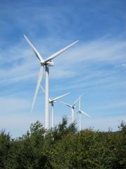 2010_08_06_Windmills (2)