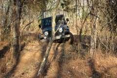 13 Mile Creek Jeepin