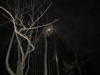 2010_12_18_Darkside-111