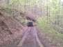Beaverhole