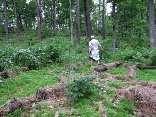 2011_05_23_Gettysburg_1-124