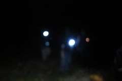 Mountwood Night Caching