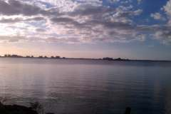 Dunedin, FL