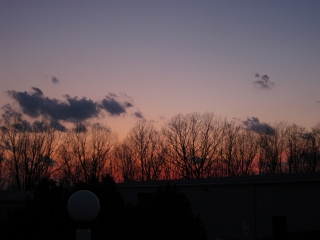 2012_03_13_Week_11