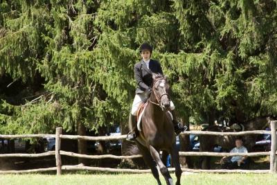 Ligonier Horse Show-105.jpg