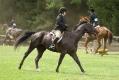 Ligonier Horse Show-116.jpg