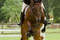 Ligonier Horse Show-118.jpg
