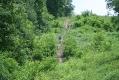 rachelcarson-20060624-163.jpg
