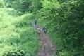 rachelcarson-20060624-169.jpg