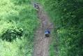rachelcarson-20060624-170.jpg