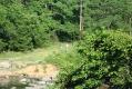 rachelcarson-20060624-215.jpg