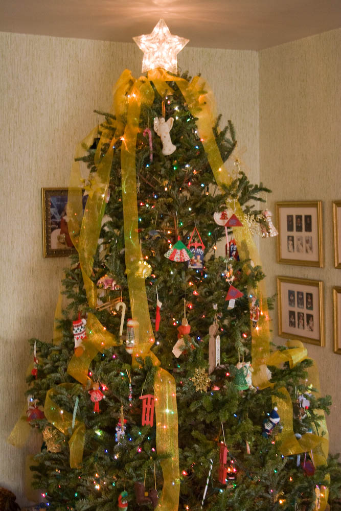 2007_Christmas-103.jpg