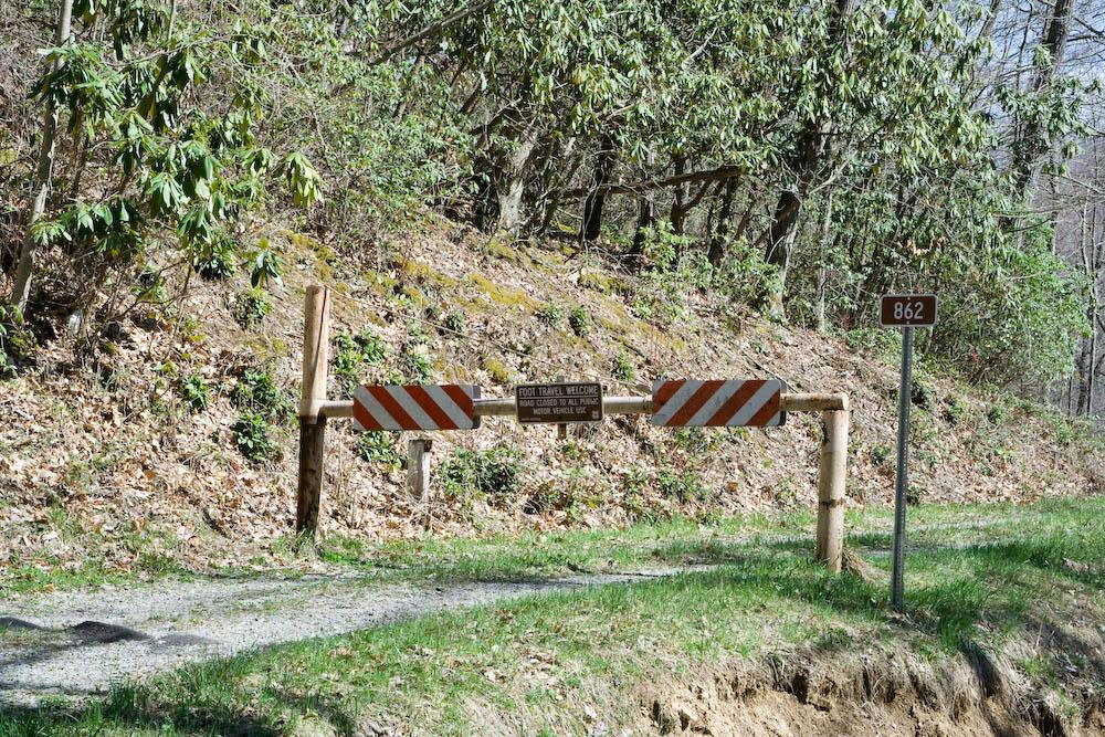 2008_04_12_Pheasant_Mountain-127.jpg