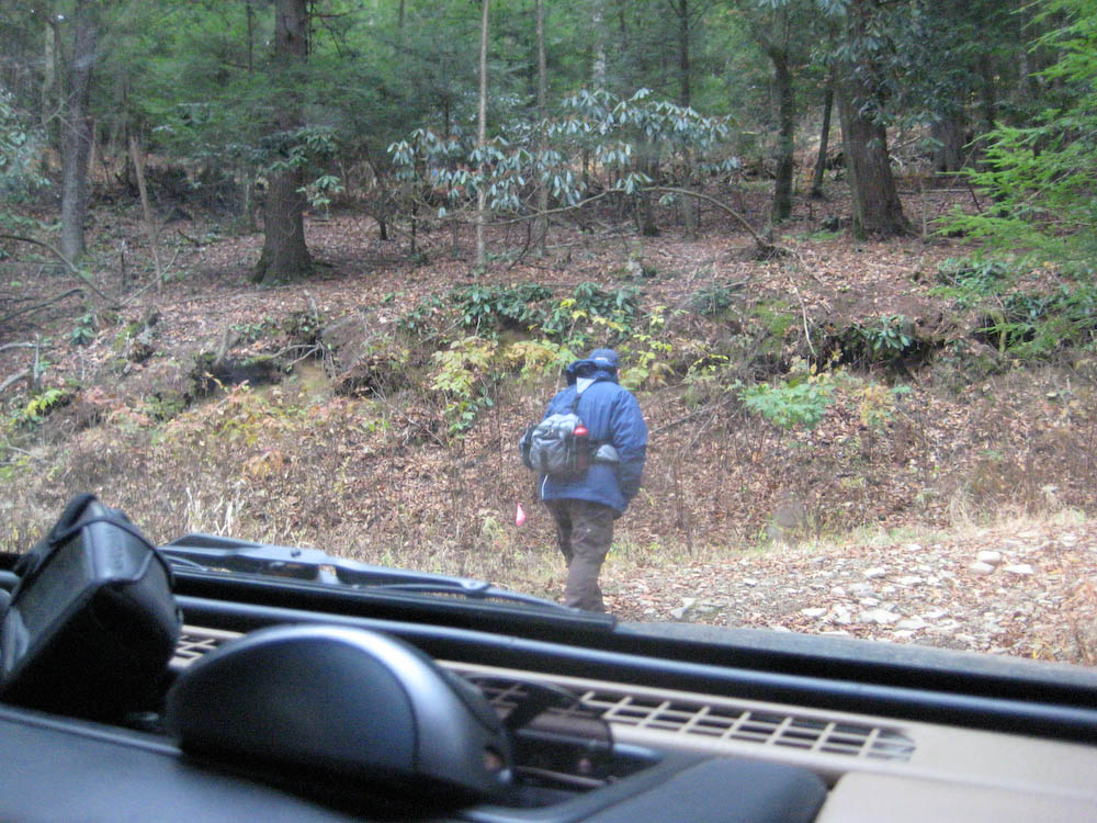 2008_11_09_Bear_Run-101.jpg