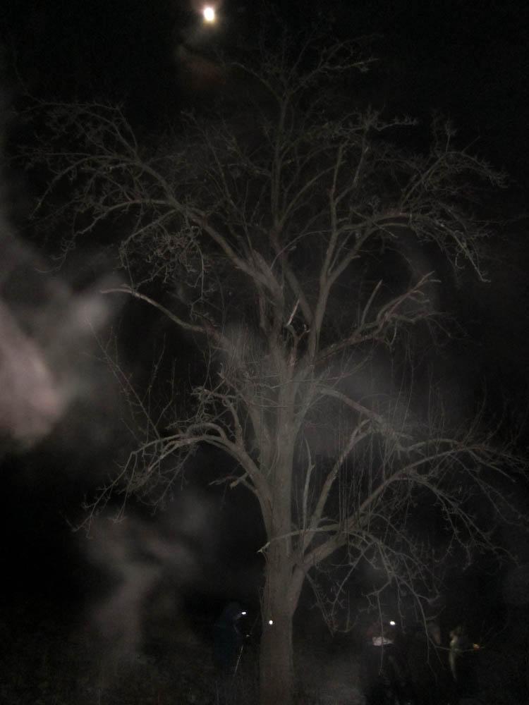 2010_12_18_Darkside-112