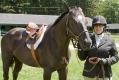 Ligonier Horse Show-102.jpg