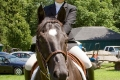 Ligonier Horse Show-103.jpg