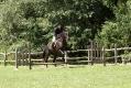 Ligonier Horse Show-104.jpg