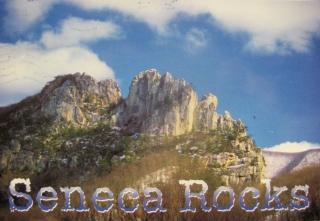 seneca (1).jpg