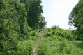 rachelcarson-20060624-158.jpg
