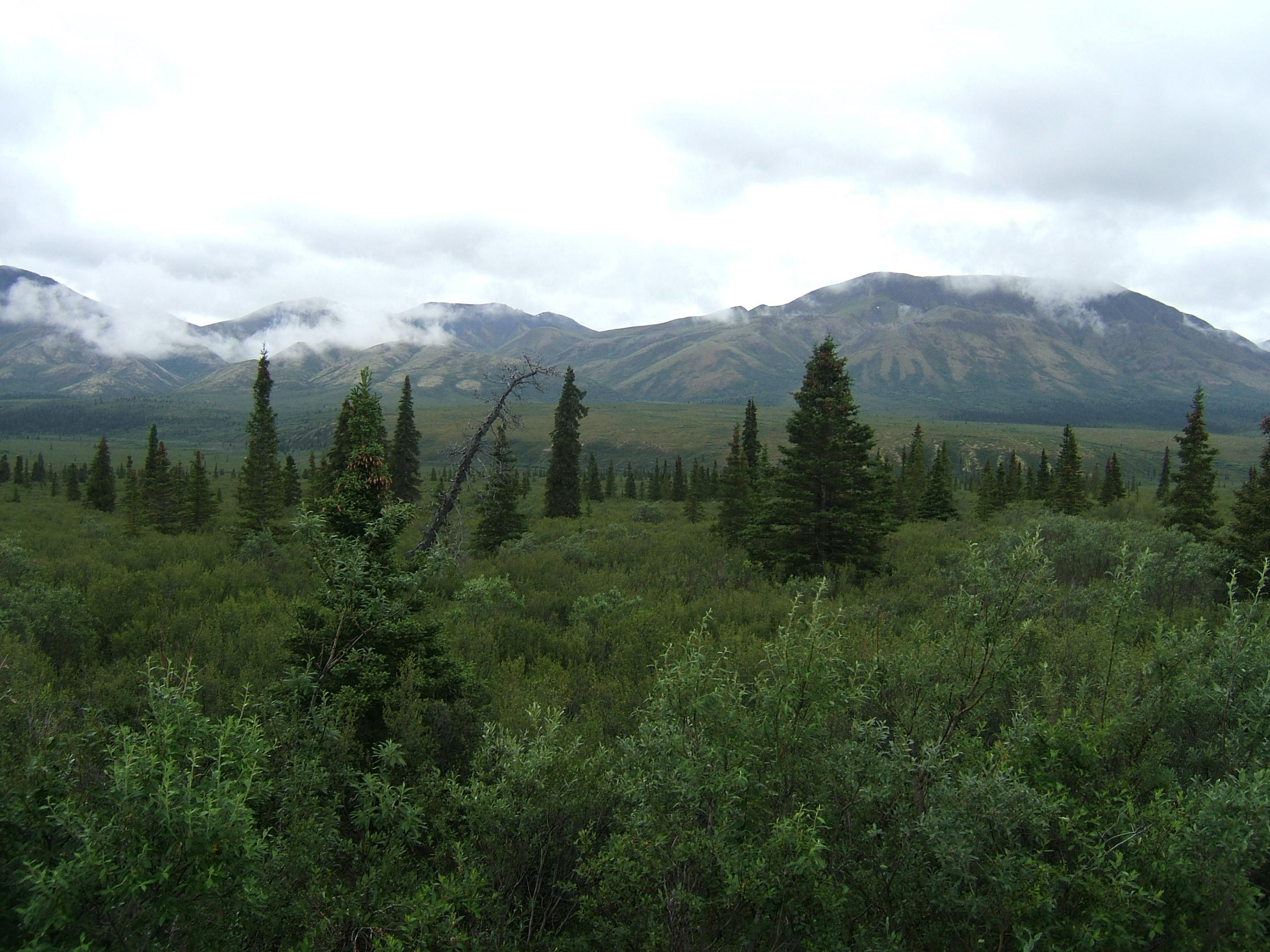 Alaska 2014 149.JPG